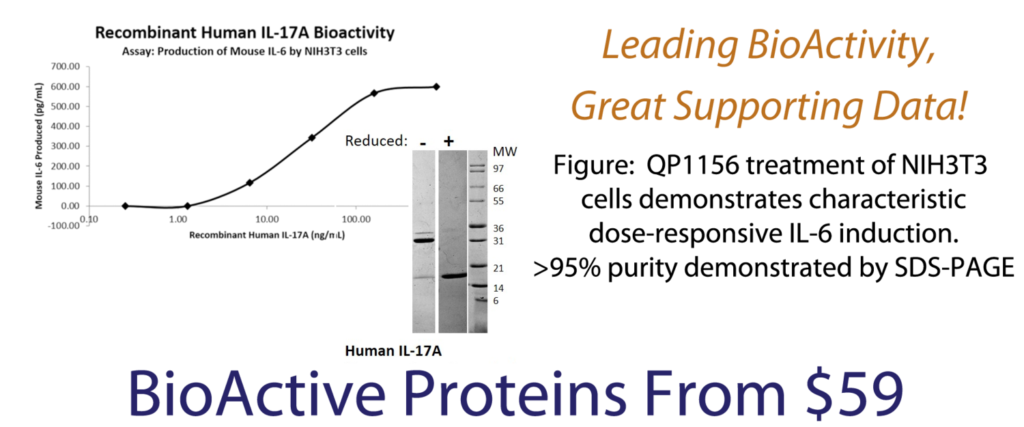 BioActive Protein Banner