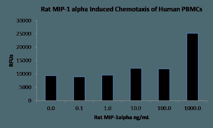 QP1529 CCL3 / Mip1a