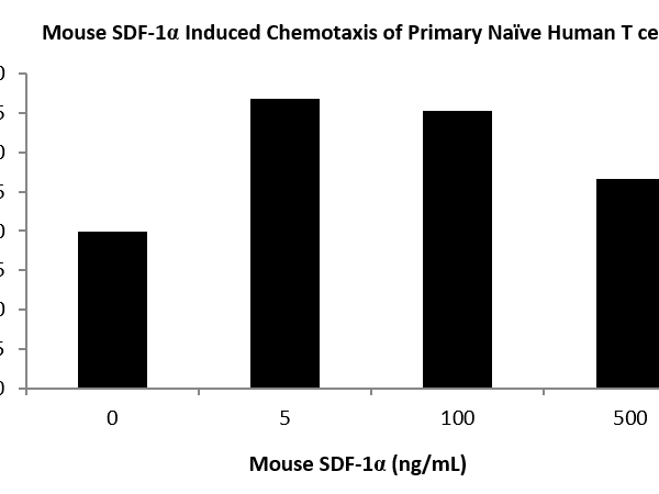 QP5454 CXCL12 / SDF-1