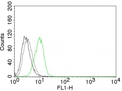 Flow Cytometry of human p27 on HeLa Cells. Black: Cells alone; Grey: Isotype Control; Green: Alexa Fluor® 488-labeled p27 Monoclonal Antibody (SX53G8).