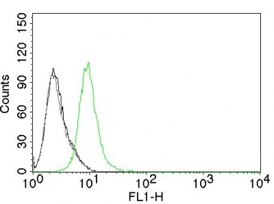 Flow Cytometry of human p27 on Jurkat Cells. Black: Cells alone; Grey: Isotype Control; Green: Alexa Fluor® 488-labeled p27 Monoclonal Antibody (KIP1/769).