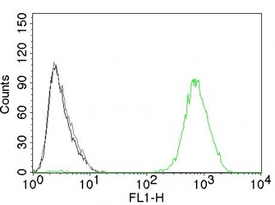 Flow Cytometry of EGFR on Mouse NIH/3T3 Cells. Black: Cells alone; Grey: Isotype Control; Green: AF488-labeled EGFR Monoclonal Antibody (GFR45).