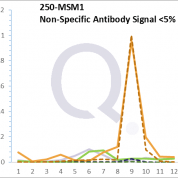 Analysis of Mass Spec data (dashed-line) of fractions stained with Alkaline Phosphatase / PLAP MS-QAVA™ monoclonal antibody [Clone: ALPP/870] (solid-line), reveals that less than 4.4% of signal is attributable to non-specific binding of anti-Alkaline Phosphatase / PLAP [Clone ALPP/870] to targets other than ALPP protein. Even frequently cited antibodies have much greater non-specific interactions, averaging over 30%. Data in image is from analysis in Jurkat, U202 and HeLa cells.