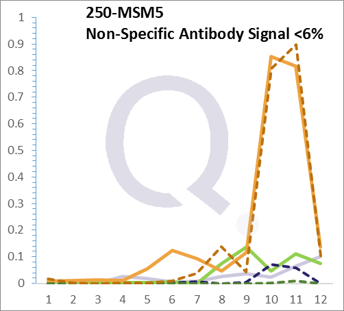 Analysis of Mass Spec data (dashed-line) of fractions stained with Alkaline Phosphatase / PLAP MS-QAVA™ monoclonal antibody [Clone: PL8-F6] (solid-line), reveals that less than 4.2% of signal is attributable to non-specific binding of anti-Alkaline Phosphatase / PLAP [Clone PL8-F6] to targets other than ALPP protein. Even frequently cited antibodies have much greater non-specific interactions, averaging over 30%. Data in image is from analysis in Jurkat, U202 and HeLa cells.