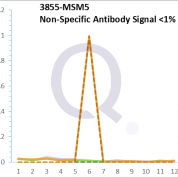 Analysis of Mass Spec data (dashed-line) of fractions stained with Cytokeratin 7 MS-QAVA™ monoclonal antibody [Clone: KRT7/760 + KRT7/903] (solid-line), reveals that less than 0.3% of signal is attributable to non-specific binding of anti-Cytokeratin 7 [Clone KRT7/760 + KRT7/903] to targets other than KRT7 protein. Even frequently cited antibodies have much greater non-specific interactions, averaging over 30%. Data in image is from analysis in Jurkat, U202 and HeLa cells.