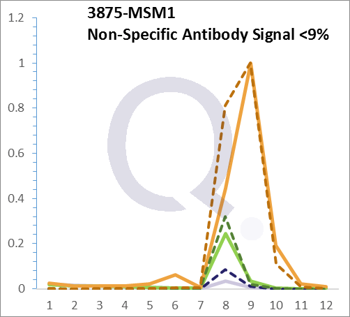 Analysis of Mass Spec data (dashed-line) of fractions stained with Cytokeratin 18 Anti-Human MS-QAVA™ monoclonal antibody [Clone: DC10] (solid-line), reveals that less than 8.3% of signal is attributable to non-specific binding of anti-Cytokeratin 18 [Clone:  DC10] to targets other than KRT18 protein. Even frequently cited antibodies have much greater non-specific interactions, averaging over 30%. Data in image is from analysis in A431, RT4 and MCF7 cells.