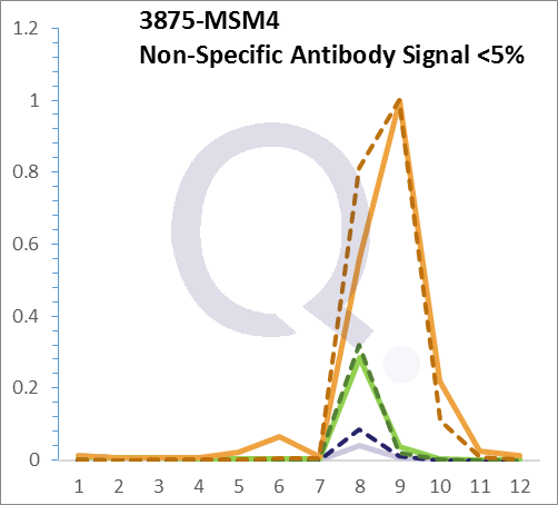 Analysis of Mass Spec data (dashed-line) of fractions stained with Cytokeratin 18 MS-QAVA™ monoclonal antibody [Clone: KRT18/834] (solid-line), reveals that less than 4.4% of signal is attributable to non-specific binding of anti-Cytokeratin 18 [Clone KRT18/834] to targets other than KRT18 protein. Even frequently cited antibodies have much greater non-specific interactions, averaging over 30%. Data in image is from analysis in A431, RT4 and MCF7 cells.
