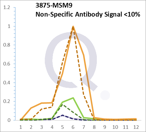 Analysis of Mass Spec data (dashed-line) of fractions stained with Cytokeratin 18 MS-QAVA™ monoclonal antibody [Clone: B23.1] (solid-line), reveals that less than 13.5% of signal is attributable to non-specific binding of anti-Cytokeratin 18 [Clone B23.1] to targets other than KRT18 protein. Even frequently cited antibodies have much greater non-specific interactions, averaging over 30%. Data in image is from analysis in A431, RT4 and MCF7 cells.