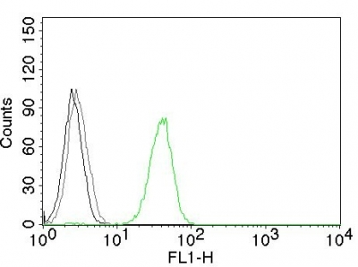 Flow Cytometry of human CD31 on Jurkat Cells. Black: Cells alone; Grey: Isotype Control; Green: Alexa Fluor® 488-labeled CD31 Monoclonal Antibody (JC/7A).