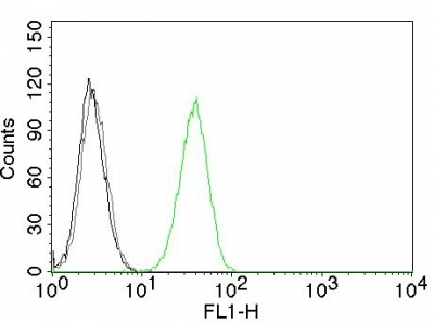 Flow Cytometry of human CD31 on Jurkat Cells. Black: Cells alone; Grey: Isotype Control; Green: Alexa Fluor® 488-labeled CD31 Monoclonal Antibody (C31.1).