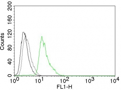 Flow Cytometry of human Cyclin D1 on Jurkat Cells. Black: Cells alone; Grey: Isotype Control; Green: Alexa Fluor® 488-labeled Cyclin D1 Monoclonal Antibody (DCS-6).