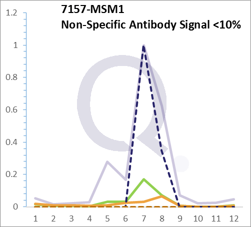 Analysis of Mass Spec data (dashed-line) of fractions stained with p53 Tumor Suppressor Protein MS-QAVA™ monoclonal antibody [Clone: BP53-12] (solid-line), reveals that less than 12.9% of signal is attributable to non-specific binding of anti-p53 Tumor Suppressor Protein [Clone BP53-12] to targets other than TP53 protein. Even frequently cited antibodies have much greater non-specific interactions, averaging over 30%. Data in image is from analysis in A431, RT4 and MCF7 cells.