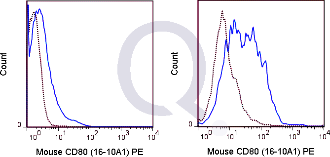 C57Bl/6 splenocytes were unstimulated  (solid line) or 0.125 ug PE Armenian Hamster isotype control (dashed line). Flow Cytometry Data from 10,000 events.