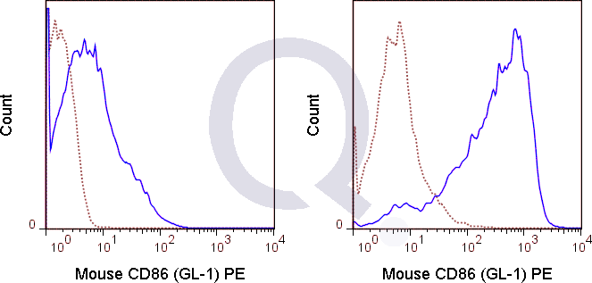 C57Bl/6 splenocytes were unstimulated  (solid line) or 0.125 ug PE Rat IgG2a isotype control (dashed line). Flow Cytometry Data from 10,000 events.