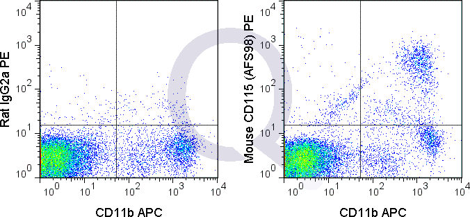 C57Bl/6 peripheral blood cells were stained with APC Mouse Anti-CD11b  and 0.125 ug PE Mouse Anti-CD115  (QAB53) (right panel) or 0.125 ug PE Rat IgG2a (left panel).