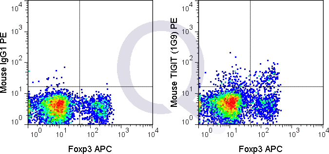 C57Bl/6 splenocytes were stained with FITC Mouse Anti-CD4 , APC Anti-Human/Mouse Foxp3  and 0.25 ug PE Mouse Anti-TIGIT (QAB57) (right panel) or 0.25 ug PE Mouse IgG1 (left panel).