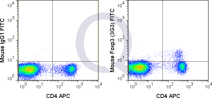 C57Bl/6 splenocytes were stained with APC Mouse Anti-CD4 , followed by intracellular staining with 0.015 ug FITC Mouse Anti-Foxp3 (QAB71) (right panel) or 0.015 ug FITC Mouse IgG1 isotype control (left panel).