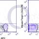 enQuire-Bio-QAB71-PE-100ug-anti-FOXP3-antibody-10