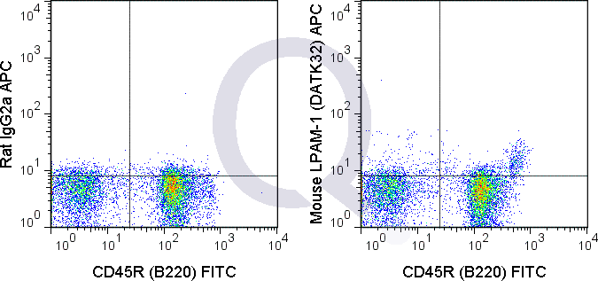 C57Bl/6 bone marrow cells were stained with FITC Mouse Anti-CD45R  and 0.25 ug APC Mouse Anti-LPAM-1 (QAB73) (rlght panel) or 0.25 ug APC Rat IgG2a isotype control (left panel).