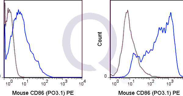 enQuire-Bio-QAB93-PE-100ug-anti-CD86-antibody-10