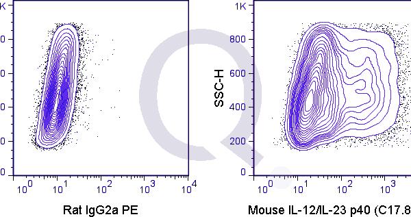 enQuire-Bio-QAB96-PE-100ug-anti-IL-12-p40-IL-23-p40-antibody-10