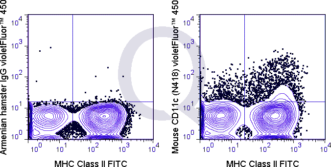 C57Bl/6 splenocytes were stained with FITC Mouse Anti-MHC Class II  and 0.125 ug V450 Mouse Anti-CD11c   (right panel) or 0.125 ug V450  710 Armenian Hamster IgG (left panel).