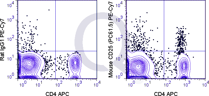C57Bl/6 splenocytes were stained with APC Mouse Anti-CD4  and 0.125 ug PE-Cy7 Mouse Anti-CD25 .