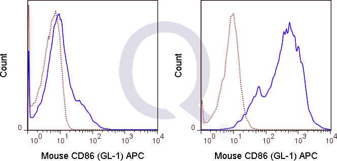 C57Bl/6 splenocytes were unstimulated  (solid line) or 0.06 ug APC Rat IgG2a isotype control (dashed line). Flow Cytometry Data from 10,000 events.