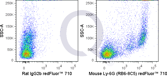 C57Bl/6 bone marrow cells were stained with 0.015 ug Qfluor™ 710 Mouse Anti-Ly-6G (QAB77) (right panel) or 0.015 ug Qfluor™ 710 Rat IgG2b isotype control (left panel).