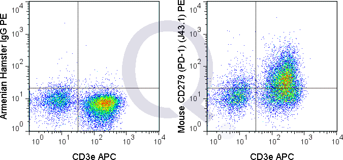 C57Bl/6 splenocytes were stimulated with ConA and then stained with APC Mouse Anti-CD3e  and 0.5 ug PE Mouse Anti-CD279  (QAB98) (right panel) or 0.5 ug PE Armenian hamster IgG isotype control (left panel).