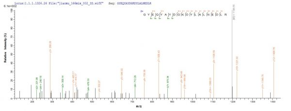 SEQUEST analysis of LC MS/MS spectra obtained from a run with QP10083 identified a match between this protein and the spectra of a peptide sequence that matches a region of HLA-G.