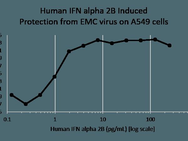 QP5213 Interferon alpha 2b