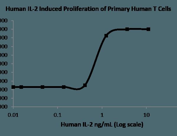 QP5250 IL2 / Interleukin-2