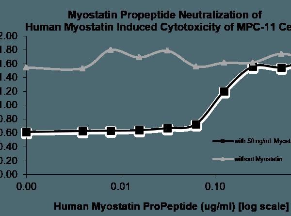 QP5265 GDF-8 / Myostatin / MSTN