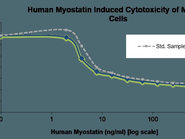 QP5329 GDF-8 / Myostatin / MSTN