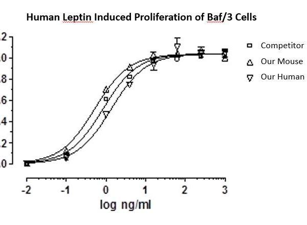 QP5350 Leptin