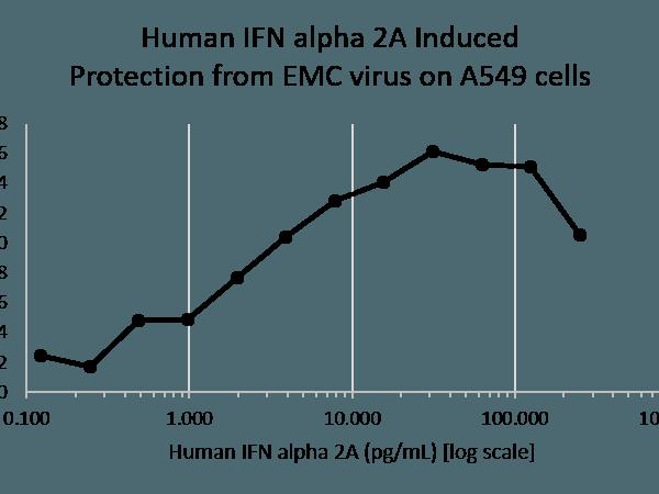 QP5364 Interferon alpha 2a
