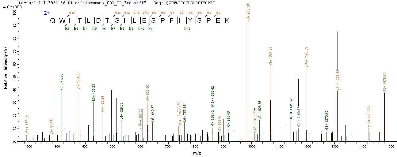 Additional SEQUEST analysis of the LC MS/MS spectra from QP6607 identified an additional between this protein and the spectra of another peptide sequence that matches a region of Rhomboid-related protein 2 confirming successful recombinant synthesis.