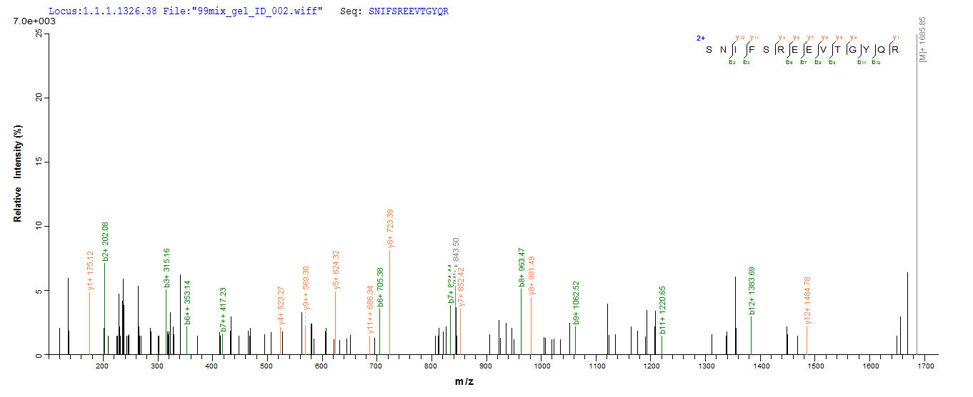 SEQUEST analysis of LC MS/MS spectra obtained from a run with QP6616 identified a match between this protein and the spectra of a peptide sequence that matches a region of Nuclear receptor ROR-gamma.