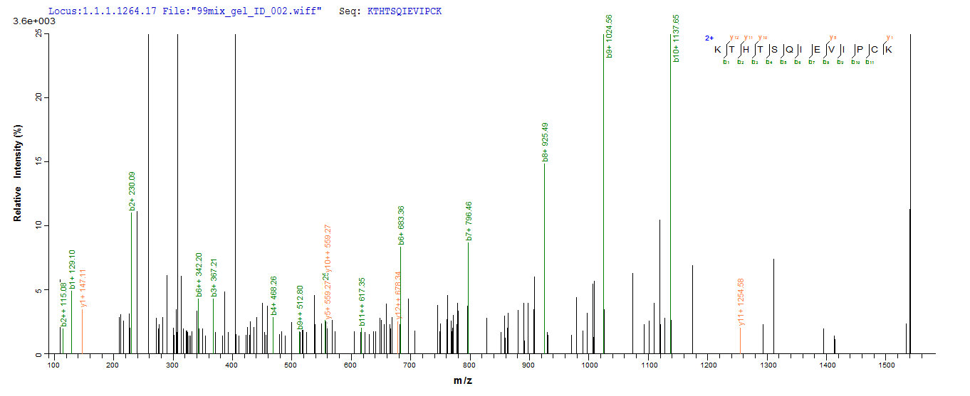 Additional SEQUEST analysis of the LC MS/MS spectra from QP6616 identified an additional between this protein and the spectra of another peptide sequence that matches a region of Nuclear receptor ROR-gamma confirming successful recombinant synthesis.