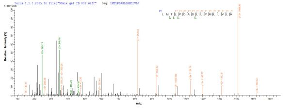 SEQUEST analysis of LC MS/MS spectra obtained from a run with QP6800 identified a match between this protein and the spectra of a peptide sequence that matches a region of TLR2 / CD282.