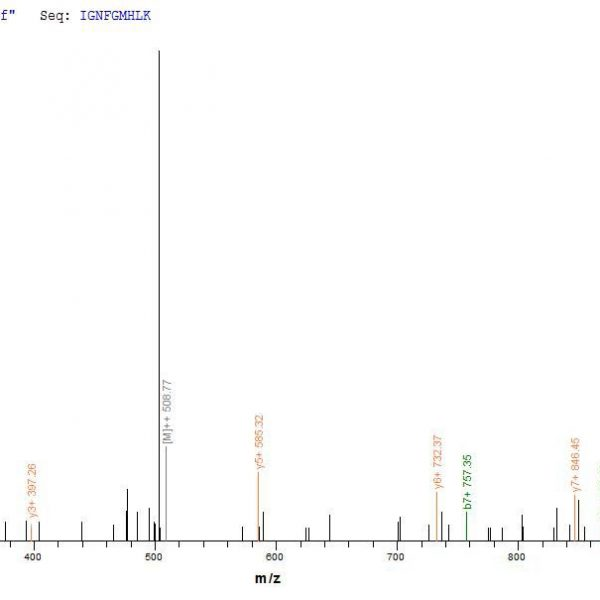 SEQUEST analysis of LC MS/MS spectra obtained from a run with QP6838 identified a match between this protein and the spectra of a peptide sequence that matches a region of TNF receptor-associated factor 6.