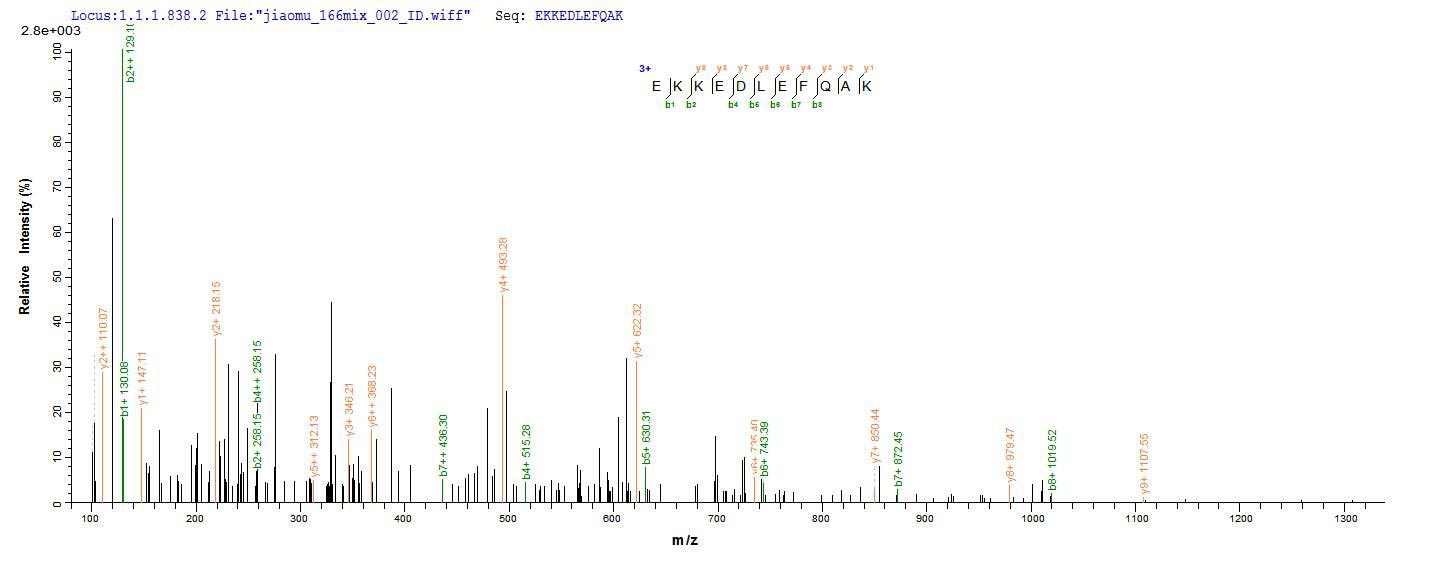 SEQUEST analysis of LC MS/MS spectra obtained from a run with QP6892 identified a match between this protein and the spectra of a peptide sequence that matches a region of DNA repair protein complementing XP-C cells.