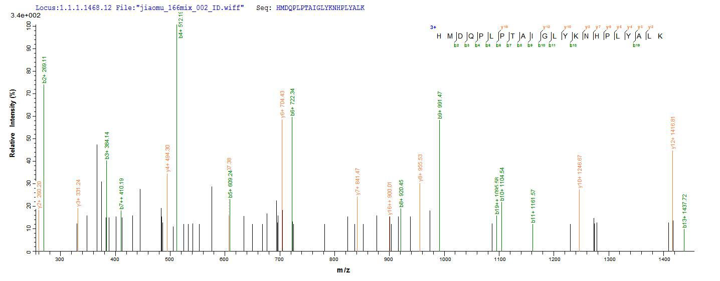 Additional SEQUEST analysis of the LC MS/MS spectra from QP6892 identified an additional between this protein and the spectra of another peptide sequence that matches a region of DNA repair protein complementing XP-C cells confirming successful recombinant synthesis.