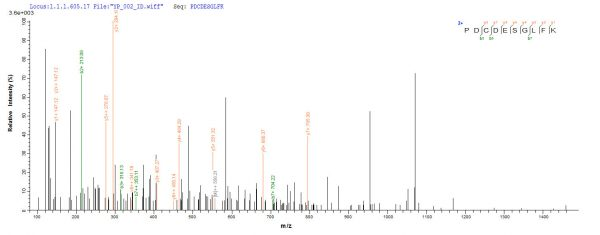 SEQUEST analysis of LC MS/MS spectra obtained from a run with QP6916 identified a match between this protein and the spectra of a peptide sequence that matches a region of EpCAM / TACSTD1.