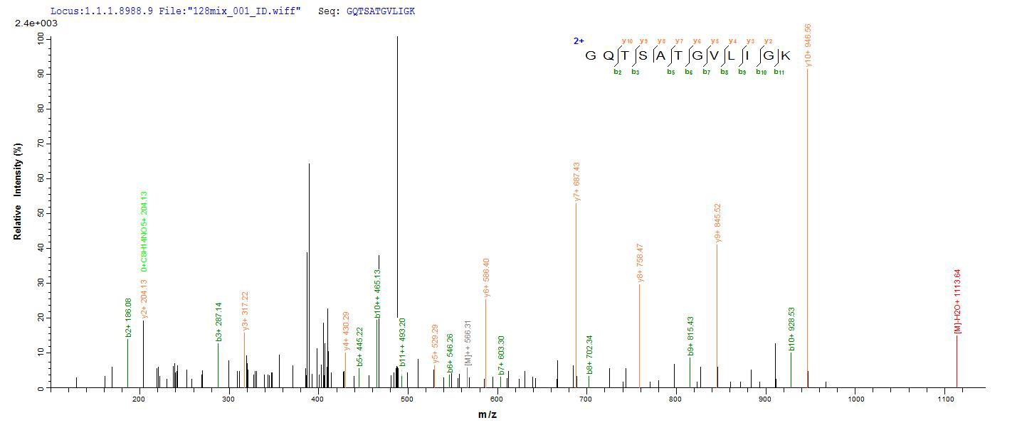 Additional SEQUEST analysis of the LC MS/MS spectra from QP7304 identified an additional between this protein and the spectra of another peptide sequence that matches a region of Exfoliative toxin A confirming successful recombinant synthesis.