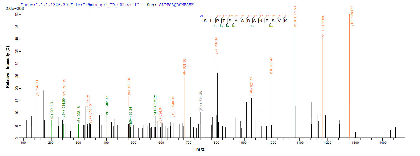SEQUEST analysis of LC MS/MS spectra obtained from a run with QP7351 identified a match between this protein and the spectra of a peptide sequence that matches a region of Envelope glycoprotein GP350.
