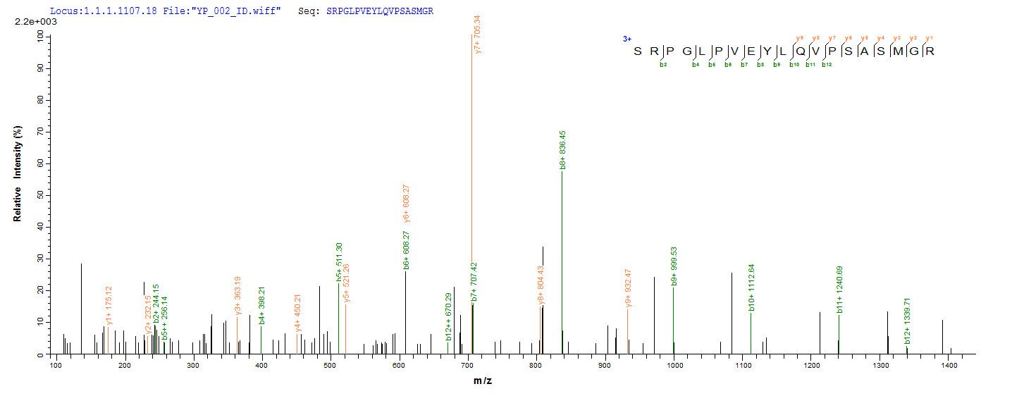 Additional SEQUEST analysis of the LC MS/MS spectra from QP7382 identified an additional between this protein and the spectra of another peptide sequence that matches a region of Ag85C confirming successful recombinant synthesis.
