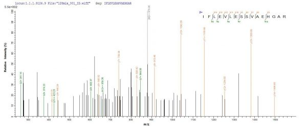 SEQUEST analysis of LC MS/MS spectra obtained from a run with QP7657 identified a match between this protein and the spectra of a peptide sequence that matches a region of TIGIT / VSTM3.