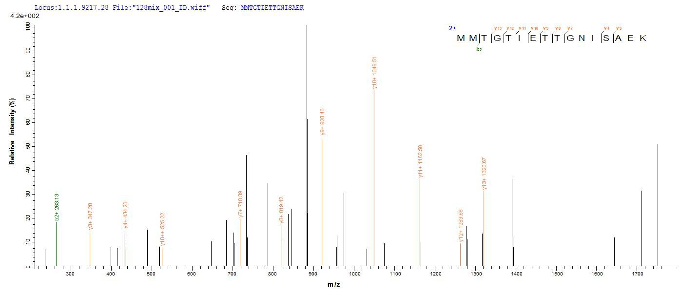 Additional SEQUEST analysis of the LC MS/MS spectra from QP7657 identified an additional between this protein and the spectra of another peptide sequence that matches a region of TIGIT / VSTM3 confirming successful recombinant synthesis.
